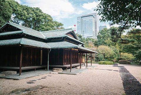 Dans les jardins du Palais Impérial de Tokyo