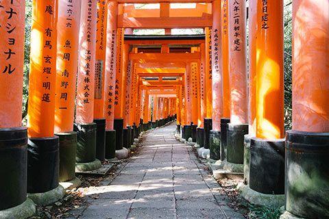 Les Toriis de Fushimi Inari