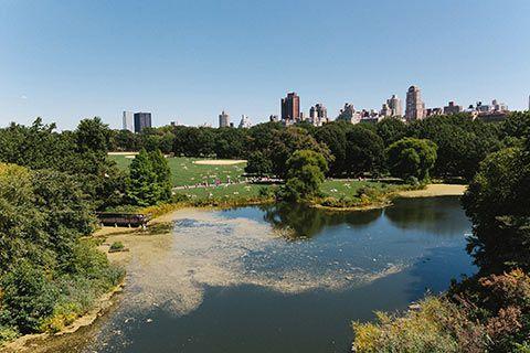 Central Park depuis Belvedere Castle
