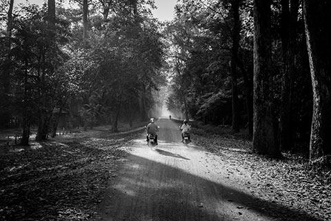 La route de la porte ouest d'Angkor